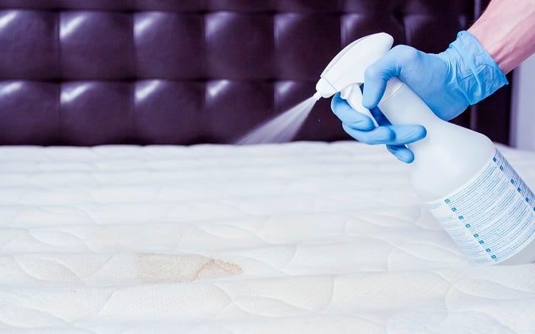 Disinfecting The Mattress