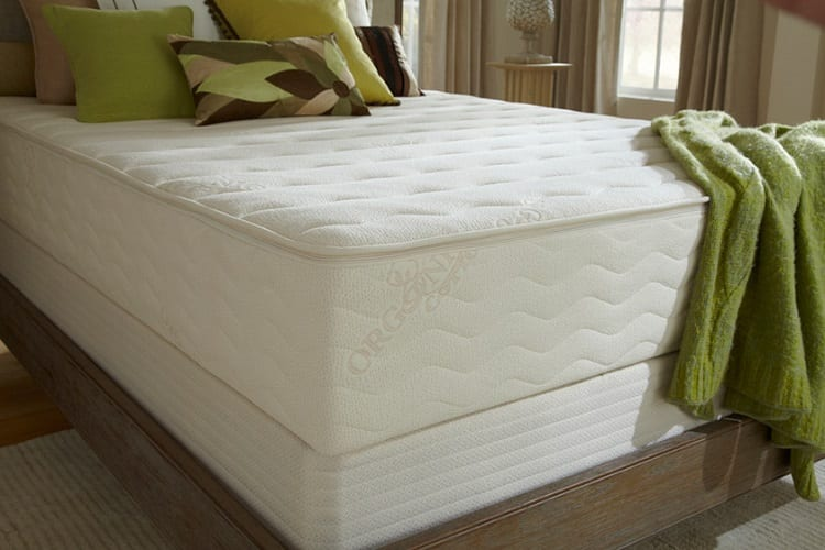 Plush Beds Botanical Bliss Organic Latex Mattress